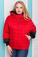 Демисезонная короткая женская куртка Нонна, Размеры 48 - 56