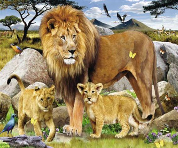 """Картина по номерам Y5550_O 40*50см """"Львиная семья"""" OPP (холст на раме с краск.кисти), фото 2"""