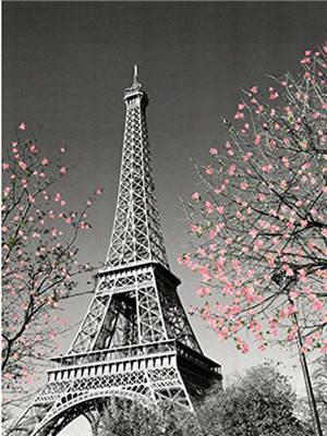 "Картина по номерам Y5474_O 40*50см ""Эйфелевая башня"" OPP (холст на раме с краск.кисти), фото 2"
