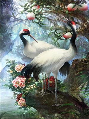 "Картина по номерам Y5226_O 40*50см ""Птицы"" OPP (холст на раме с краск.кисти)"