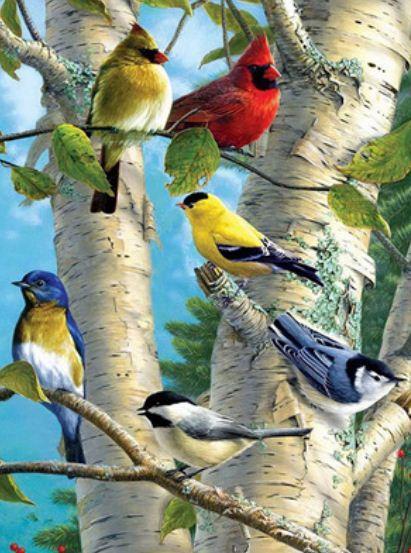 """Y5224_O Раскраска по номер. 40*50см """"Птички"""" OPP (холст на раме с краск.кисти)"""
