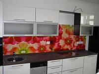 Фартук из стекла для кухни с фотоизображением на кухню, фото 1
