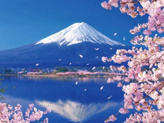 """Картина по номерам RA3301_O 40*50см """"Фудзияма"""" OPP (холст на раме с краск.кисти), фото 2"""
