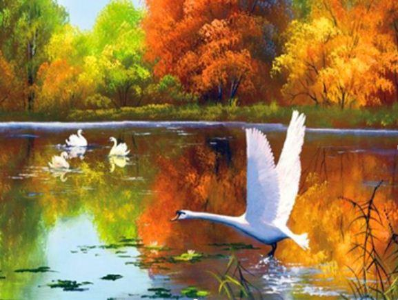 "Картина по номерам RA3224_O 40*50см ""Лебеди"" OPP (холст на раме с краск.кисти)"