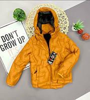 Детская куртка холофайбер Теплая курточка для деток Всего за 550 грн