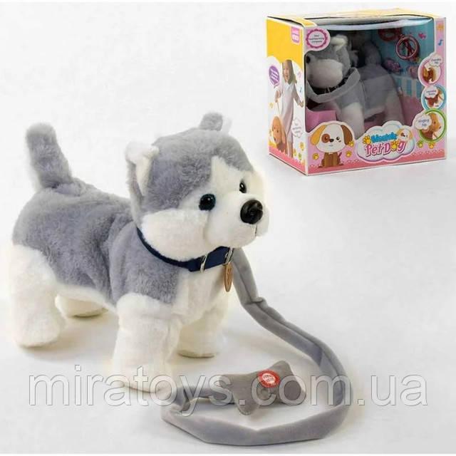 "Собачка на поводке ""Стар Тойс"" Electric Pet Dog Танцует C43980"