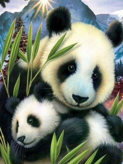 """Картина по номерам EOTG6099_O 40*50см """"Панда"""" OPP (холст на раме с краск.кисти)"""