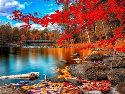 """Картина по номерам EPH9369_O 40*50см """"Багряная осень"""" OPP (холст на раме с краск.кисти), фото 2"""