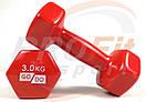 Виниловые гантели для фитнеса GoDo 0.5 кг - 3 кг (поштучно), фото 7