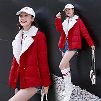 Женское короткое пальто из шерсти ягненка, зима 2019, новый стиль, корейская мода, маленький пуховик, хлопковая куртка tide, фото 1