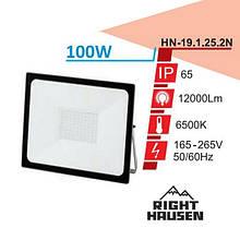 Прожектор RIGHT HAUSEN STANDARD LED 100W 6500K IP65 Чорний HN-191252
