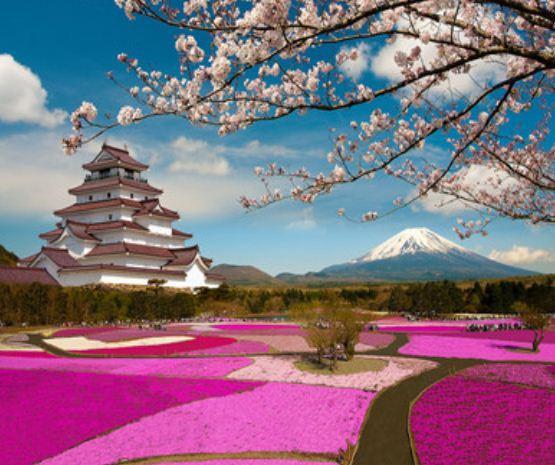 """Картина по номерам EKTL1757_O 30*40см """"Япония"""" OPP (холст на раме с краск.кисти)"""