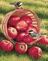 Картина по номерам BrushMe GX32292 40*50 cм Яблоки для птичек