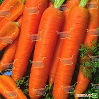 Морковь Канада F1 (Bejo) 0,2 г (перефасовано Vse-semena), фото 1