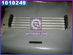 Радиатор масляный (производство  Украина)  130-1013010