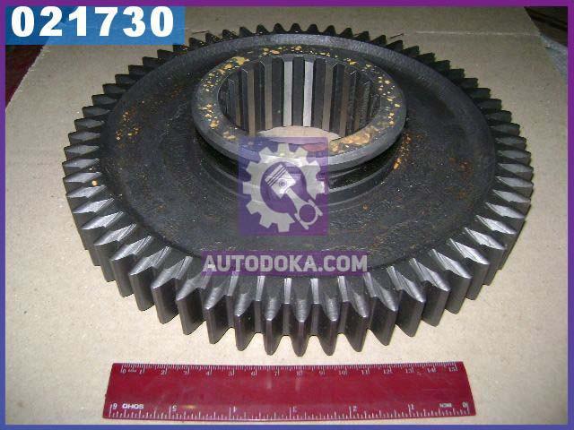 Шестерня 1-передачи вала вторичного ЯМЗ 236 Z=62 (производство  Россия)  236-1701112