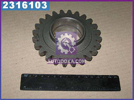 Шестерня промежуточная МТЗ (производство  МЗШ)  50-1601331-А