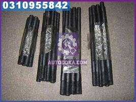 Шпилька головки блока ГАЗ 3307, ПАЗ (М 12мм, полный комплект на авто, 36шт) производство  Украина  53-11-1003121