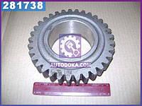 Шестерня (производство ХТЗ) 150М.37.701