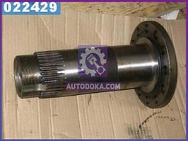 Цапфа (производство  МАЗ)  54321-2401083-10