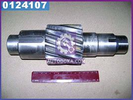 Шестерня ведущая цилиндрическая Z=12 Евро-1 (производство  КамАЗ)  53205-2402110-20