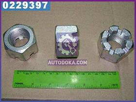 Гайка М30х2 (производство  МАЗ)  54327-2912479