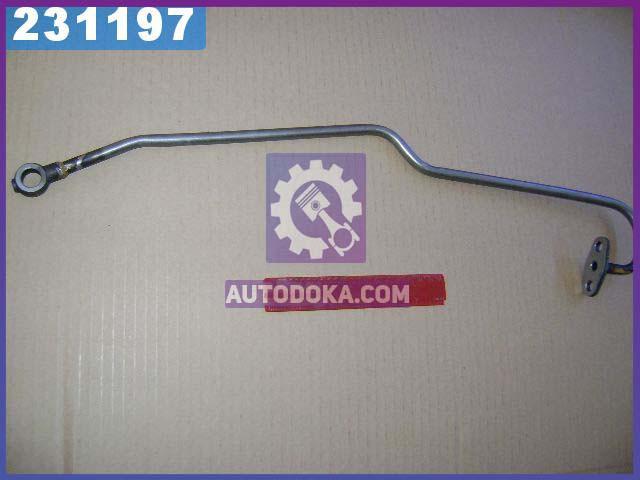 Трубка подводящая Д 245 ПАЗ (производство  ММЗ)  245-1118010-П