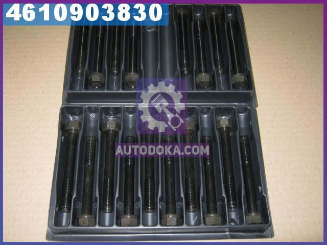 Болт головки блока (комплект ) ФОРД TRANSIT D25/D25T (производство  PAYEN)  HBS008