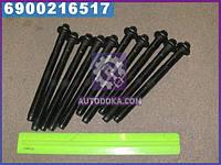 Болт головки блока (комплект ) PSA XUD9TF/XUD9UTF/XUD9TE/D8B/D8C (производство Elring) ДЕО, МЕРСЕДЕС, ВИТО, В-КЛAСС, МУССО, 582.630