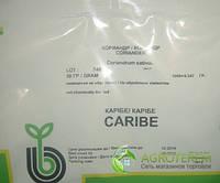 Семена кориандра (кинзы) Карибэ 50г