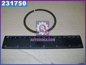 Кільце ГОСТ 2893-82 (виробництво МТЗ) КСП-72 (915128)