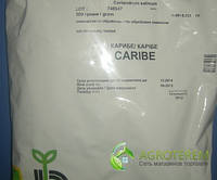Семена кориандра (кинзы) Карибэ CARIBE 500г, фото 1