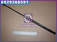 Амортизатор багажника МАЗДА 6 (производство Monroe) ML5683