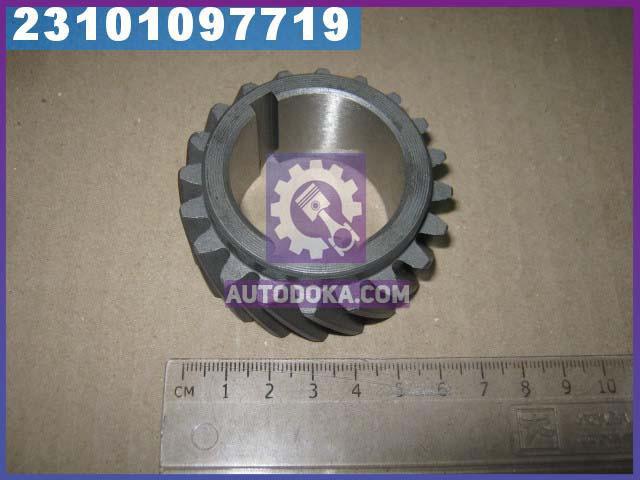 Шестерня вала коленчатого Д 240, 243, 245 Z=20 (производство  Украина)  240-1005030-А