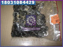 Шайба d10 гровер (1кг = 1 компл) DIN127 (производство  Украина)  М10 ШГ
