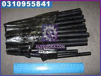 Шпилька головки блока ГАЗ 53, 3307 (М 11мм, полный комплект на авто, 36шт) производство Украина 291826-П