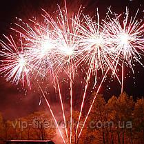 """Салют на День Рождения """"Київський фейерверк"""" 132 выстрела 20-30 калибр. Фейерверк на Ваш Праздник, фото 2"""