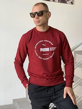 Свитшот мужской Puma / Реглан
