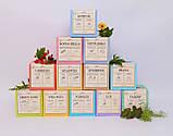 Антиоксидантный Antitox  чайный напиток,упаковка фито чай, 40 гр по 2гр ,пирамидки, фото 3