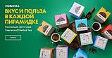 Антиоксидантный Antitox  чайный напиток,упаковка фито чай, 40 гр по 2гр ,пирамидки, фото 4