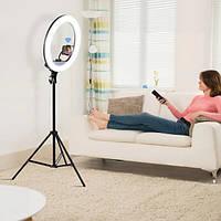 Кольцевая лампа со штативом 2.1м кольцевой свет для визажистов YQ-460D диаметр 45см с держателем, фото 1