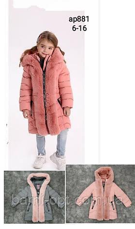 Пальто зимове на дівчаток, Setty Koop, 6-16 рр, фото 2