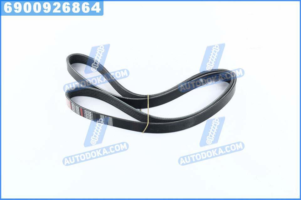 Ремень поликлиновый 6PK1635 (производство  DONGIL)  6PK1635