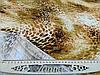 Тканина микромасло Корея тигровий принт, фото 2