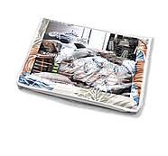 """Євро комплект (Бязь) постільної білизни """"Королева Ночі""""   Постільна білизна від виробника   Пір'я і листя, фото 5"""