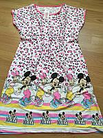 Ночнушка трикотажна жіноча, кольорова нічна сорочка 46-50