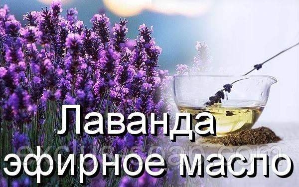 """Лаванда-эфирное масло(Германия)-10 мл - Интернет- магазин """"Эксклюзив"""" в Харькове"""