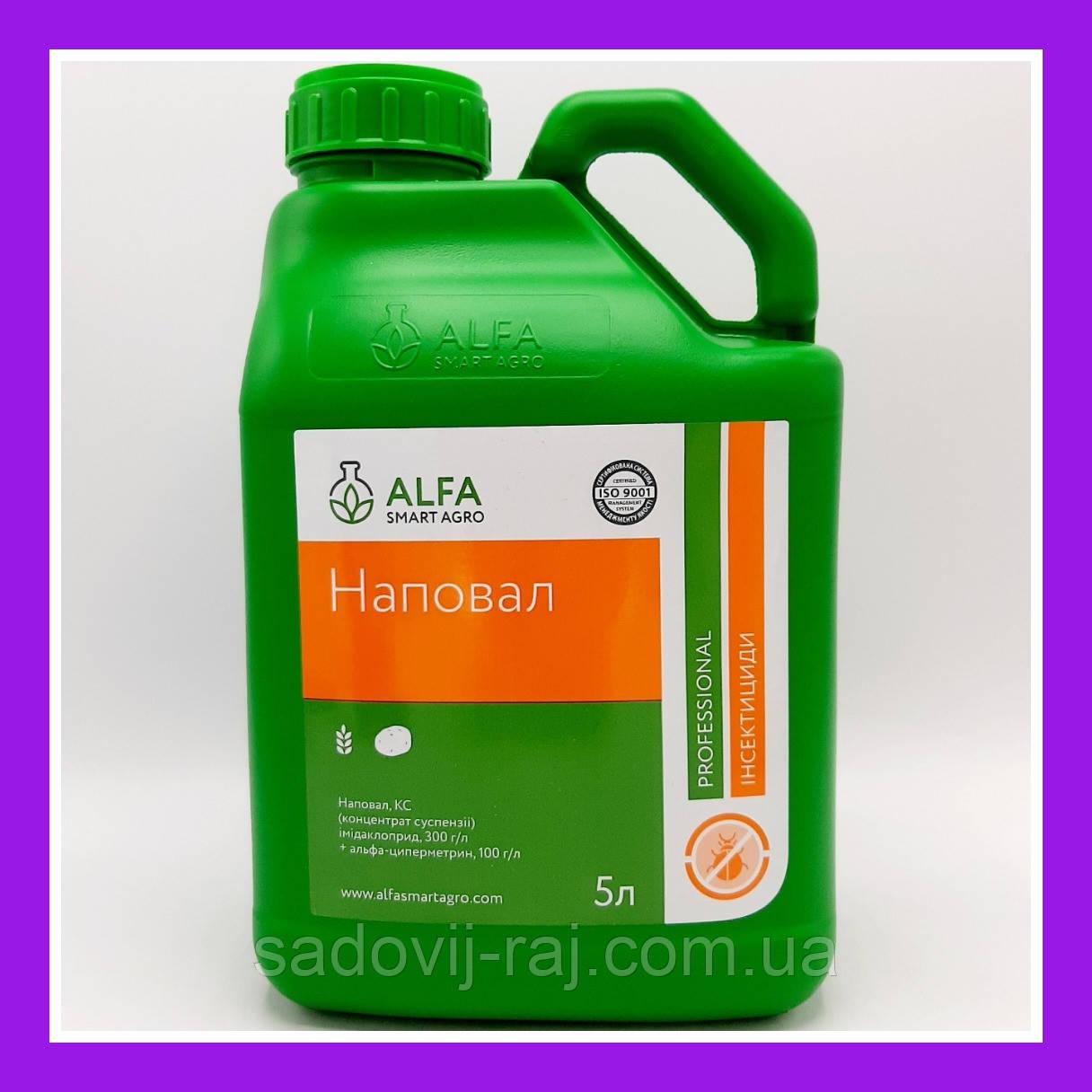 Инсектицид Наповал  (Аналог Конфидор + Фастак) К.С. 5 л Alfa Smart Agro