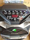 Колонка аккумуляторная Ailiang U1318SK c радиомикрофонами (200W/USB/BT/FM), фото 3