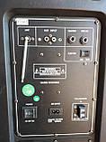 Колонка аккумуляторная Ailiang U1318SK c радиомикрофонами (200W/USB/BT/FM), фото 4